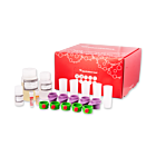 S-pluriBead® Mini Reagent Kit