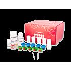 M-pluriBead® Mini Reagent Kit