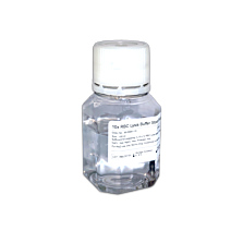 10x RBC Lysis Buffer (100ml)