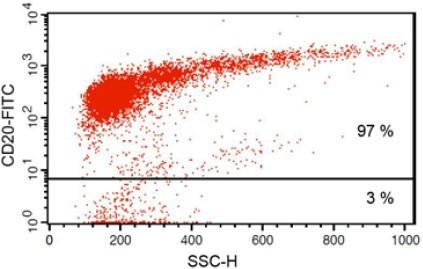 facs analysis b cell isolation